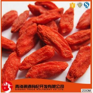 high quality red goji berry