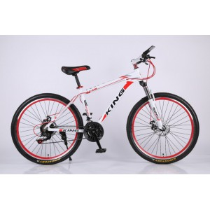 Modified bicycle